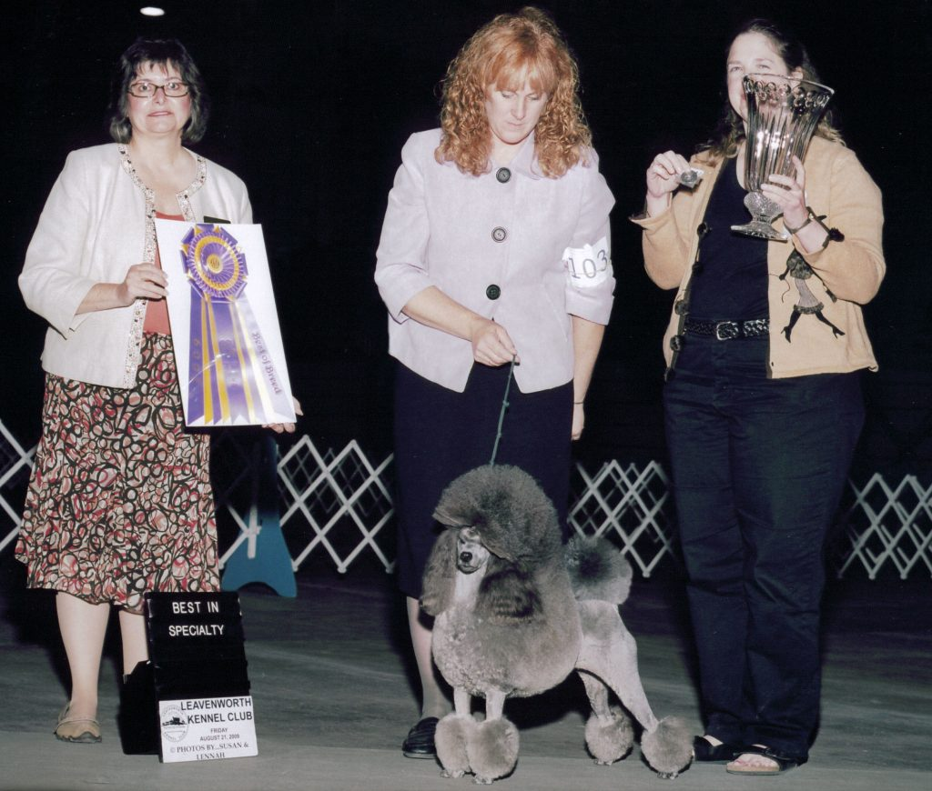 Heart of America Poodle Club Best in Specialty 2009
