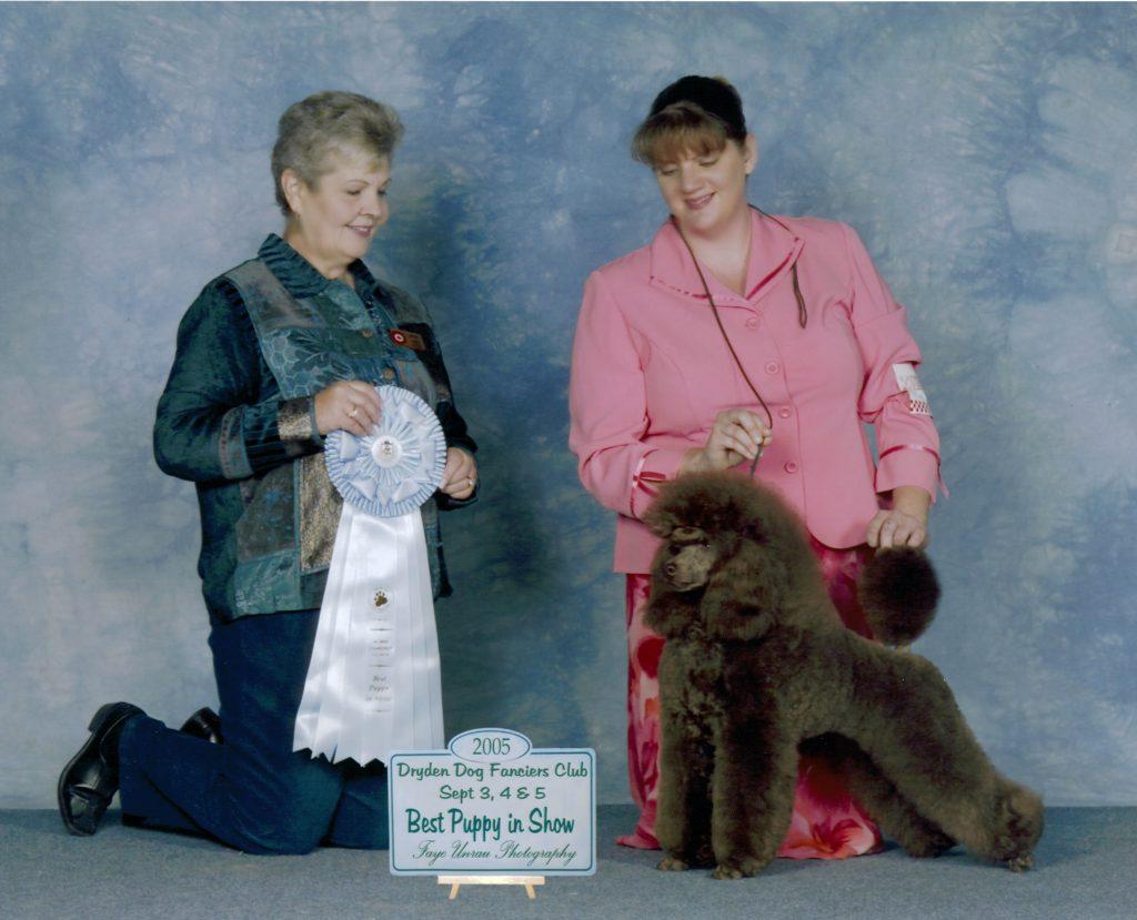 CH. Amity Mystical F.D.R.,TP Puppy BIS