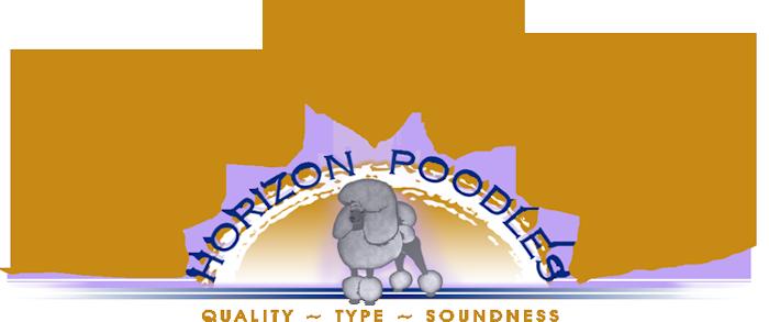 Horizon Poodles